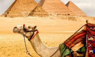 Коли краще відпочивати в єгипті