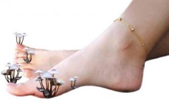 Лікування грибка нігтів. Народні та сучасні методи лікування грибка нігтів